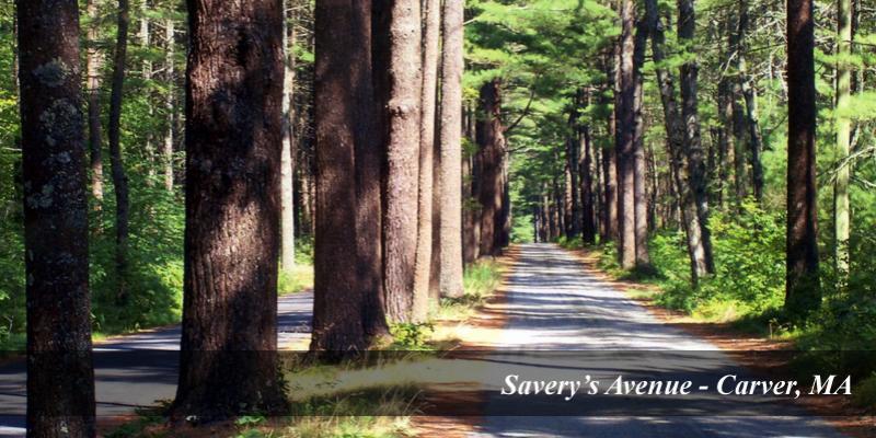 Savery's Avenue, Carver MA